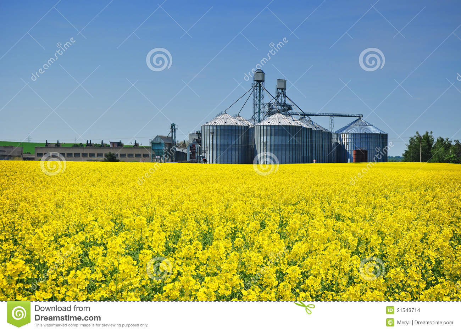 农业农厂筒仓