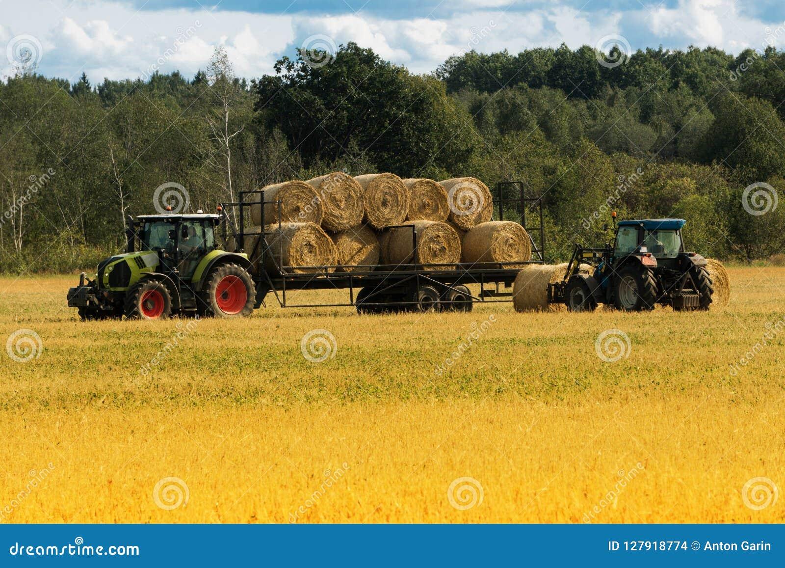 农业装载者在农场装载堆干草运输