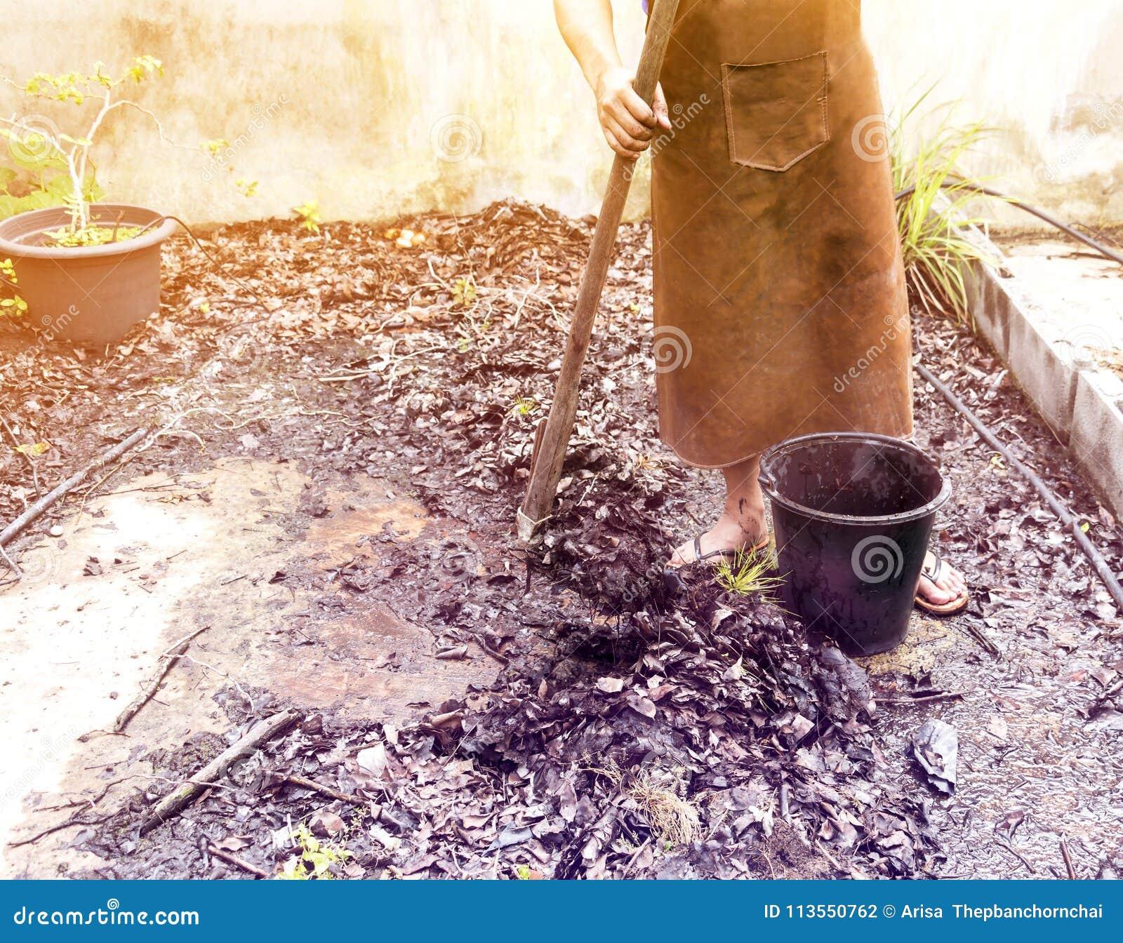 农夫工作在有锄的开掘的庭园花木中