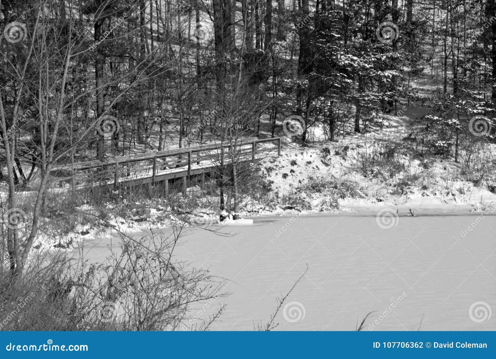 冬天与桥梁的池塘场面