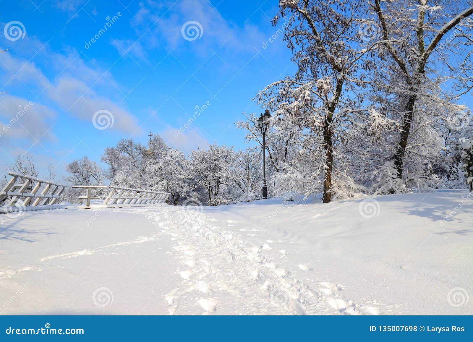 冬天公园美丽如画的风景,报道用雪,与一个美丽的灯笼反对天空