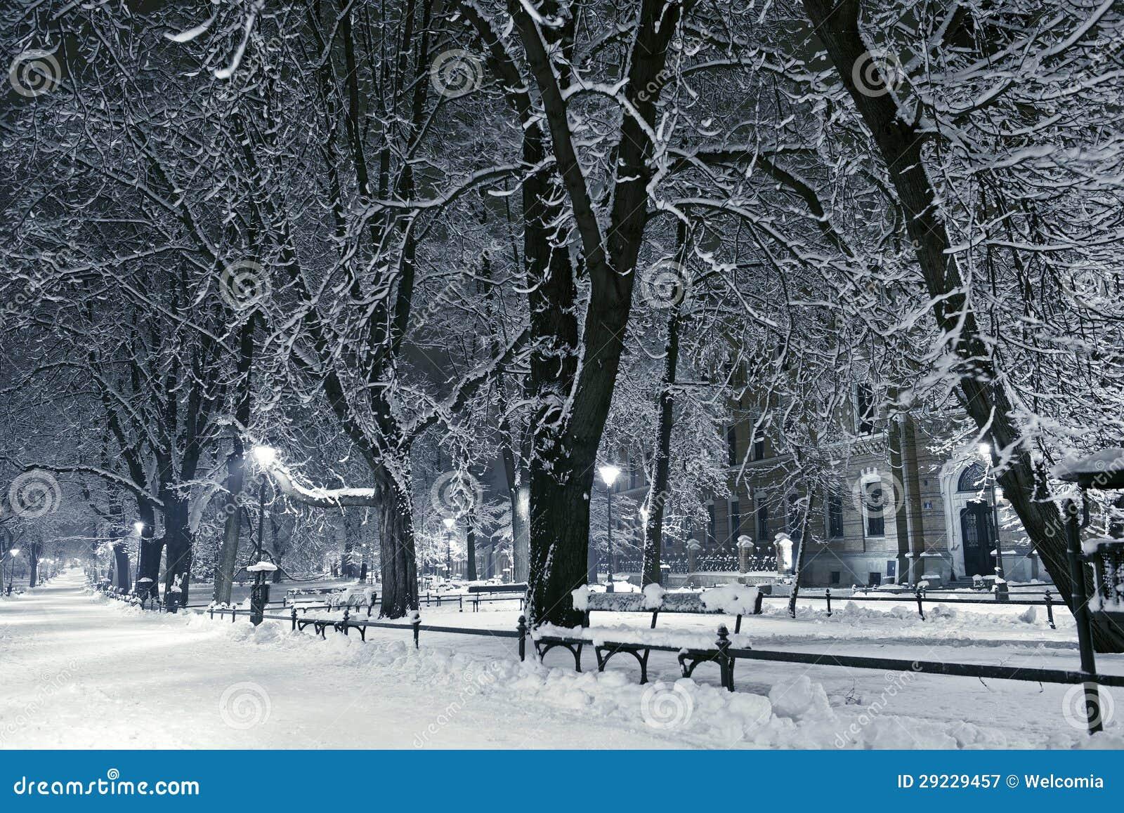 老欧洲公园在晚上. 冬天使摄影汇集环境美化.图片