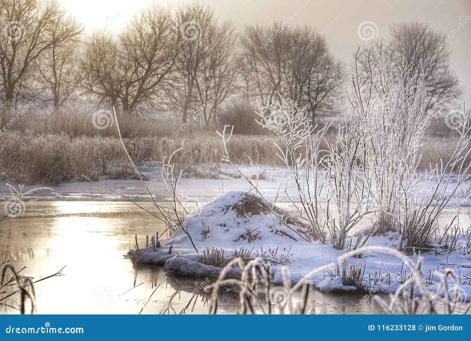冬天小河视图