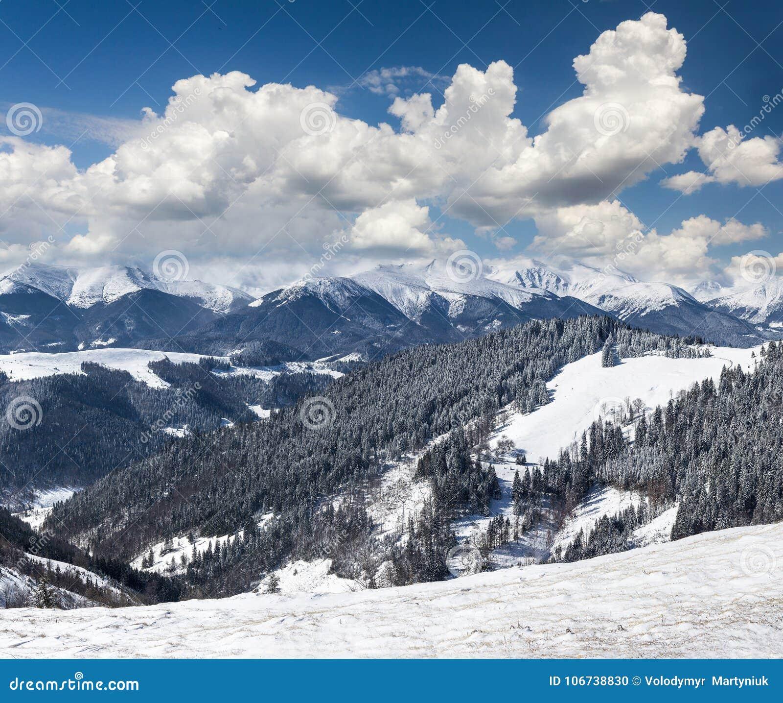 冬天山风景与很多雪的晴天 美丽如画和华美的冷漠的场面