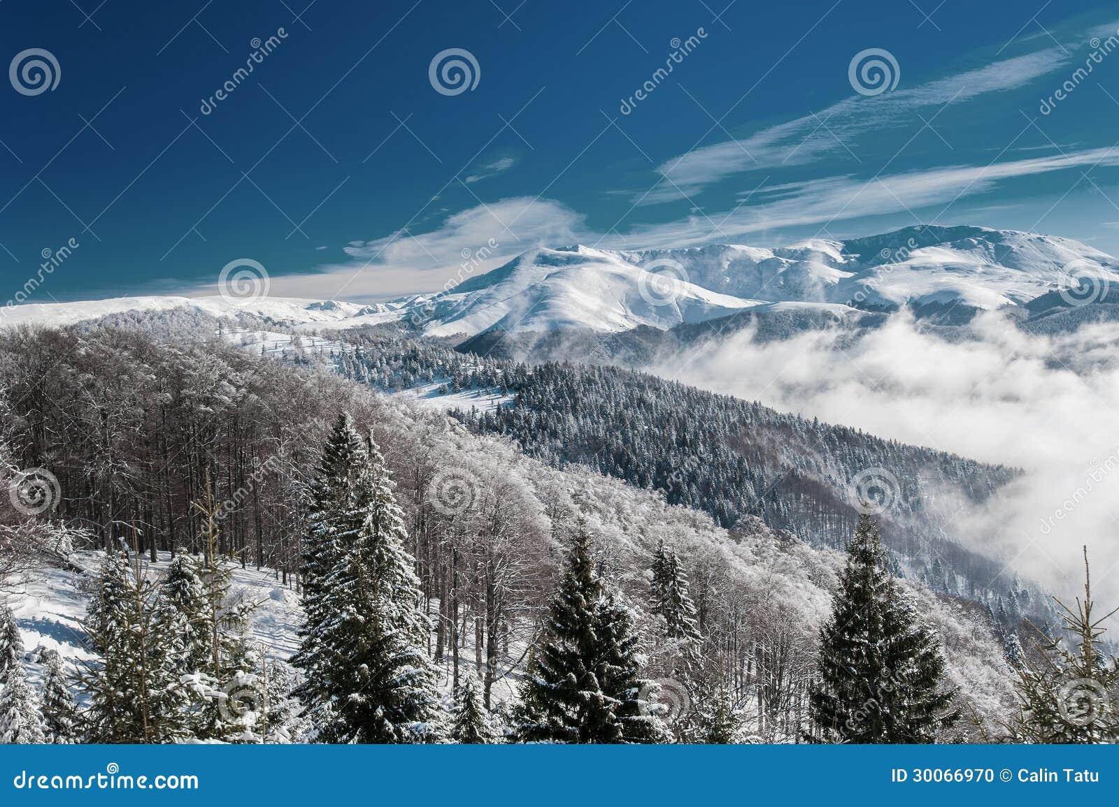冬天山风景和积雪的峰顶在欧洲在1月,在transylvanian阿尔卑斯.图片