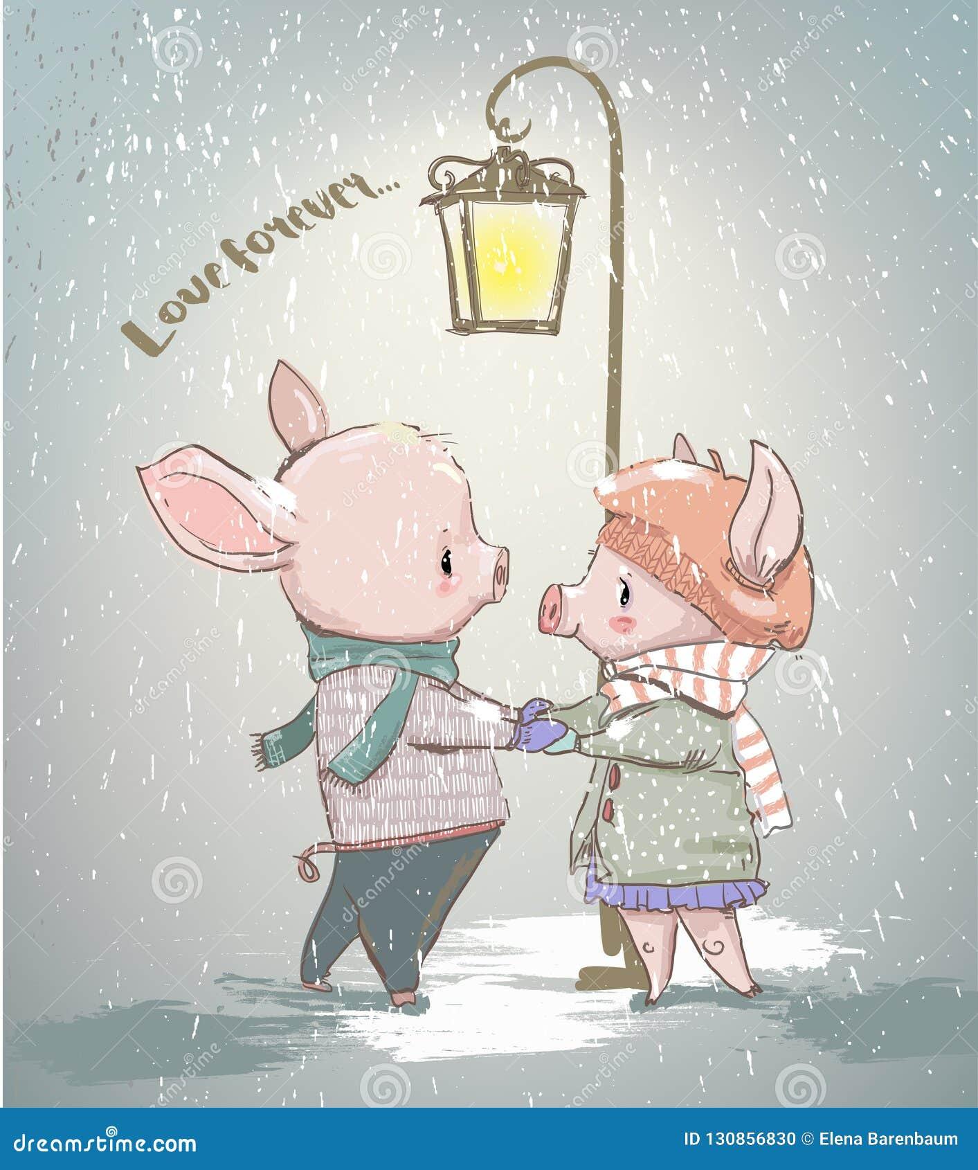 冬天猪可爱的夫妇