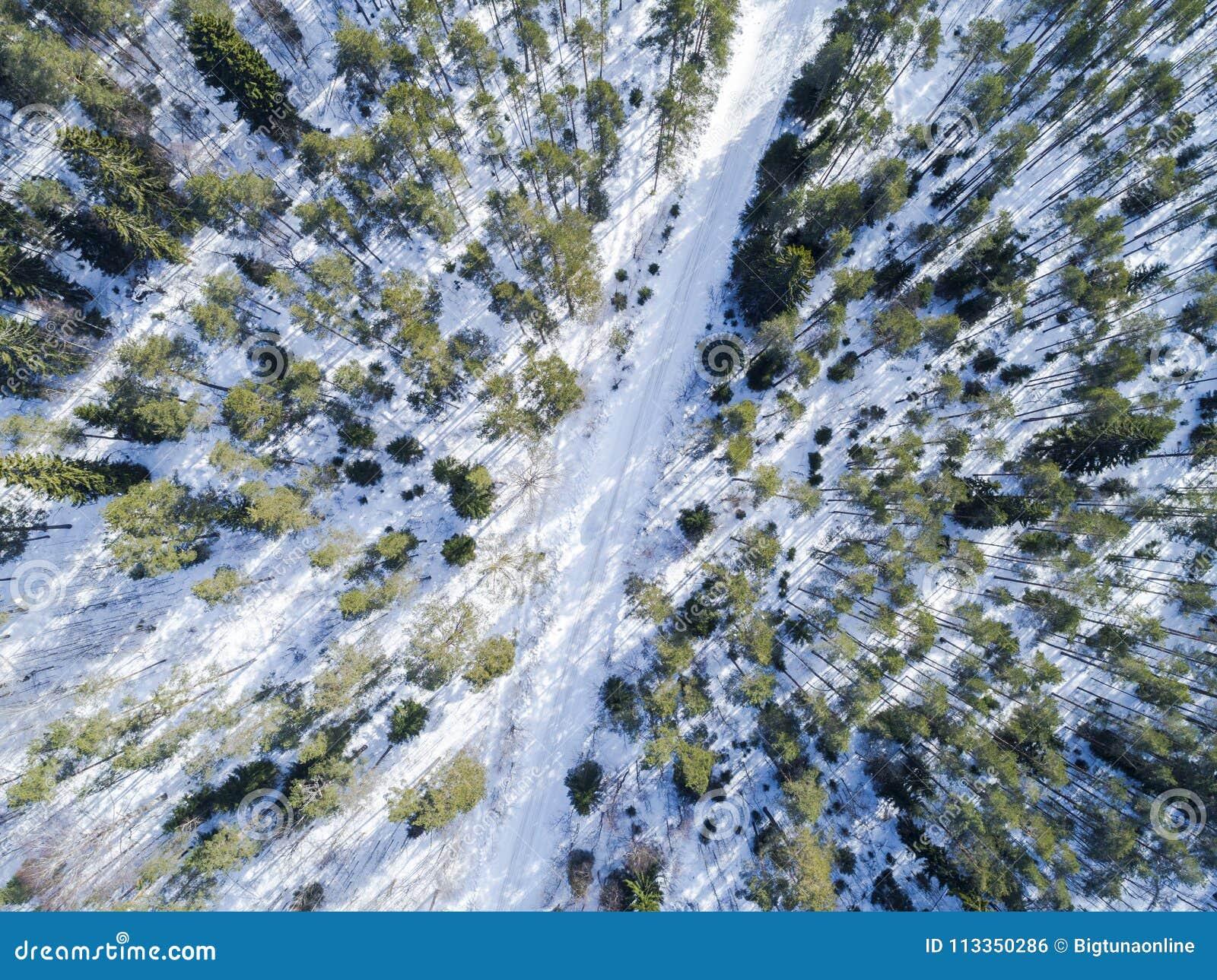 冬天路风景的空中寄生虫视图 积雪的森林和路从上面 日出本质上从俯视图的