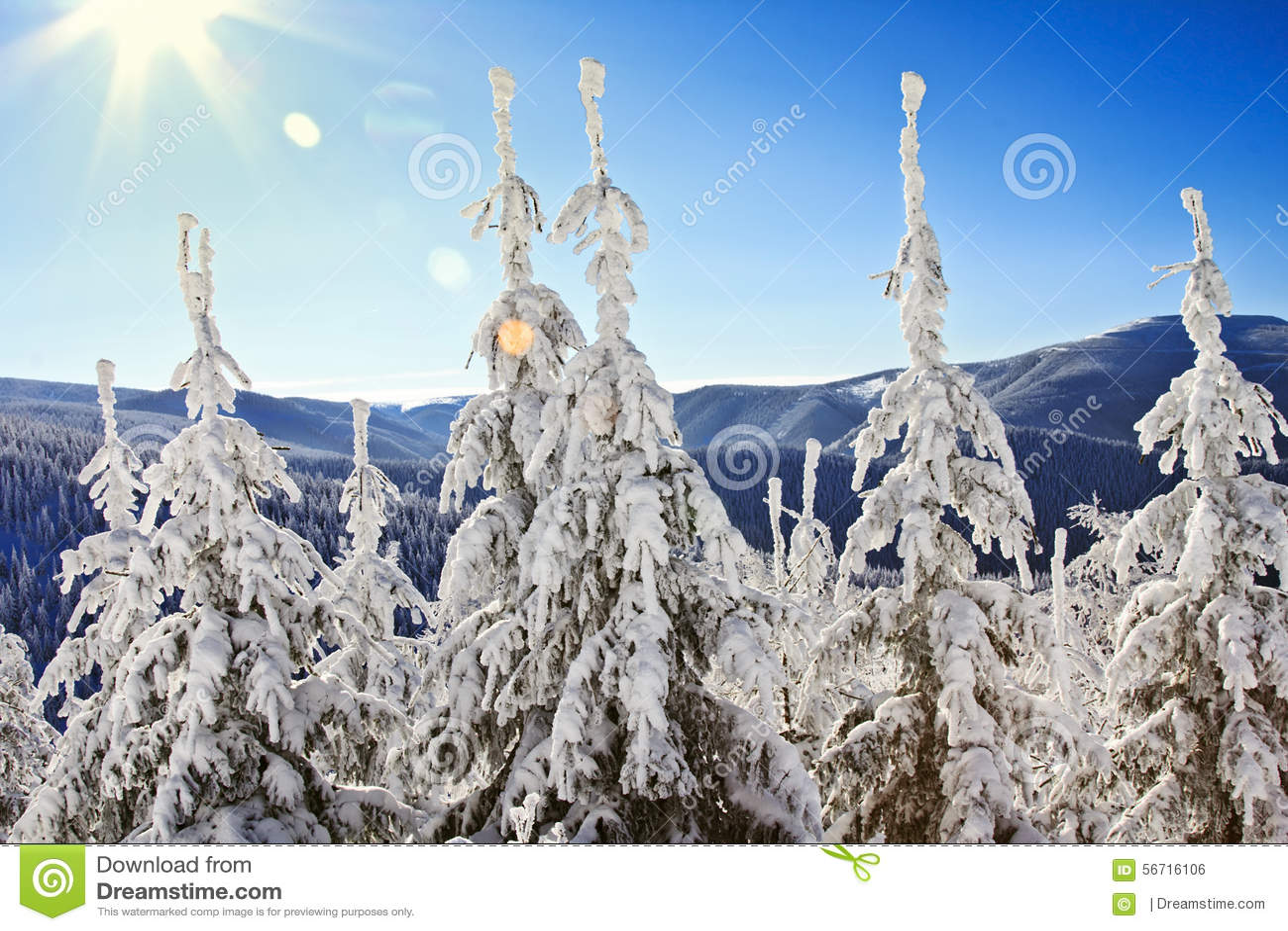 在欧洲山的美好的冬天风景.图片