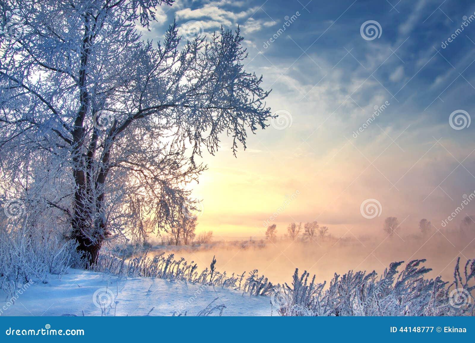 冬天,冬天,冬天