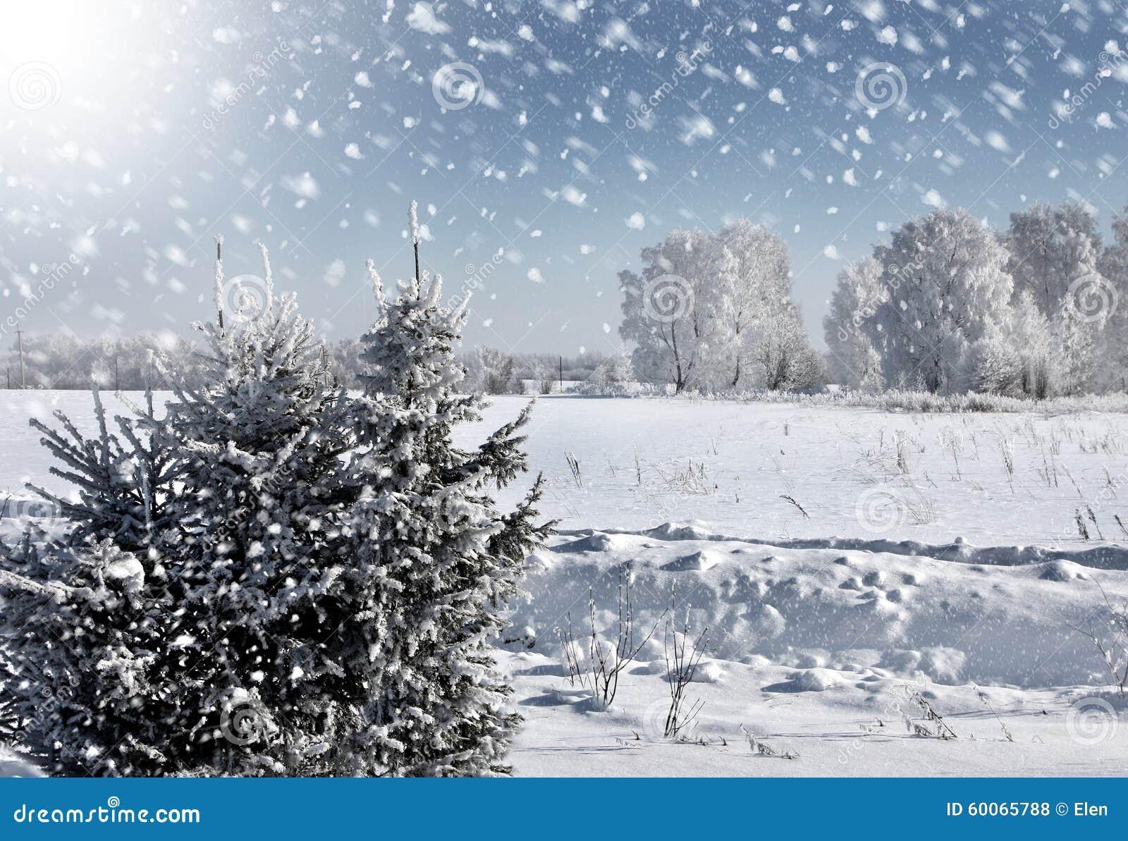 冬天自然在俄罗斯,暴风雪.