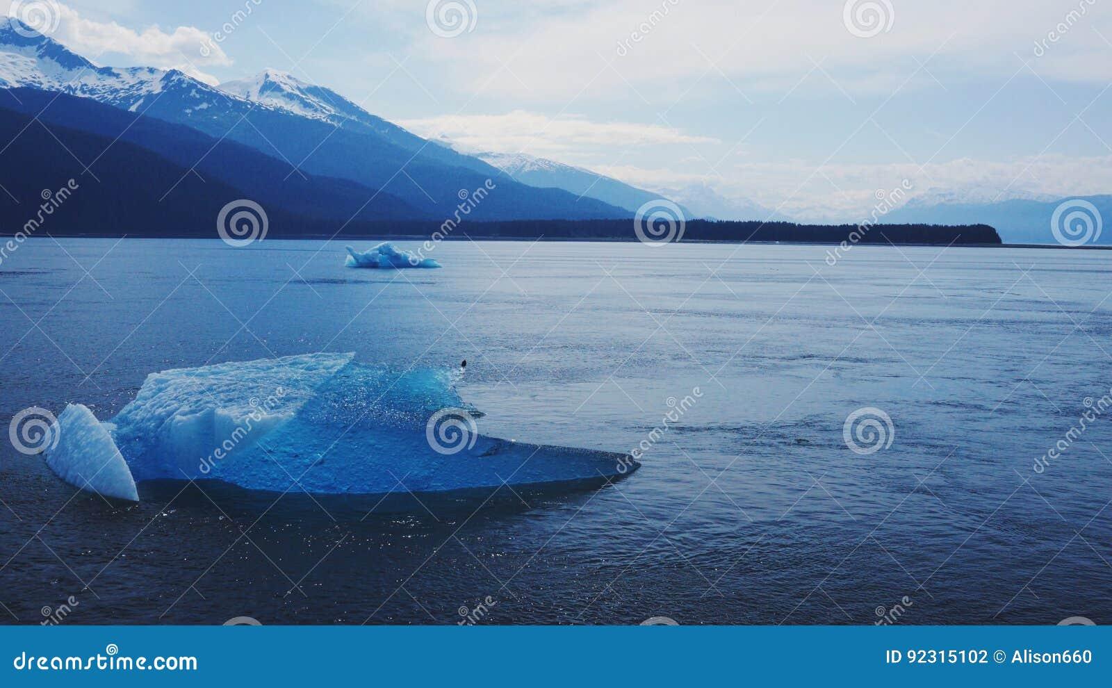 冰大块在阿拉斯加