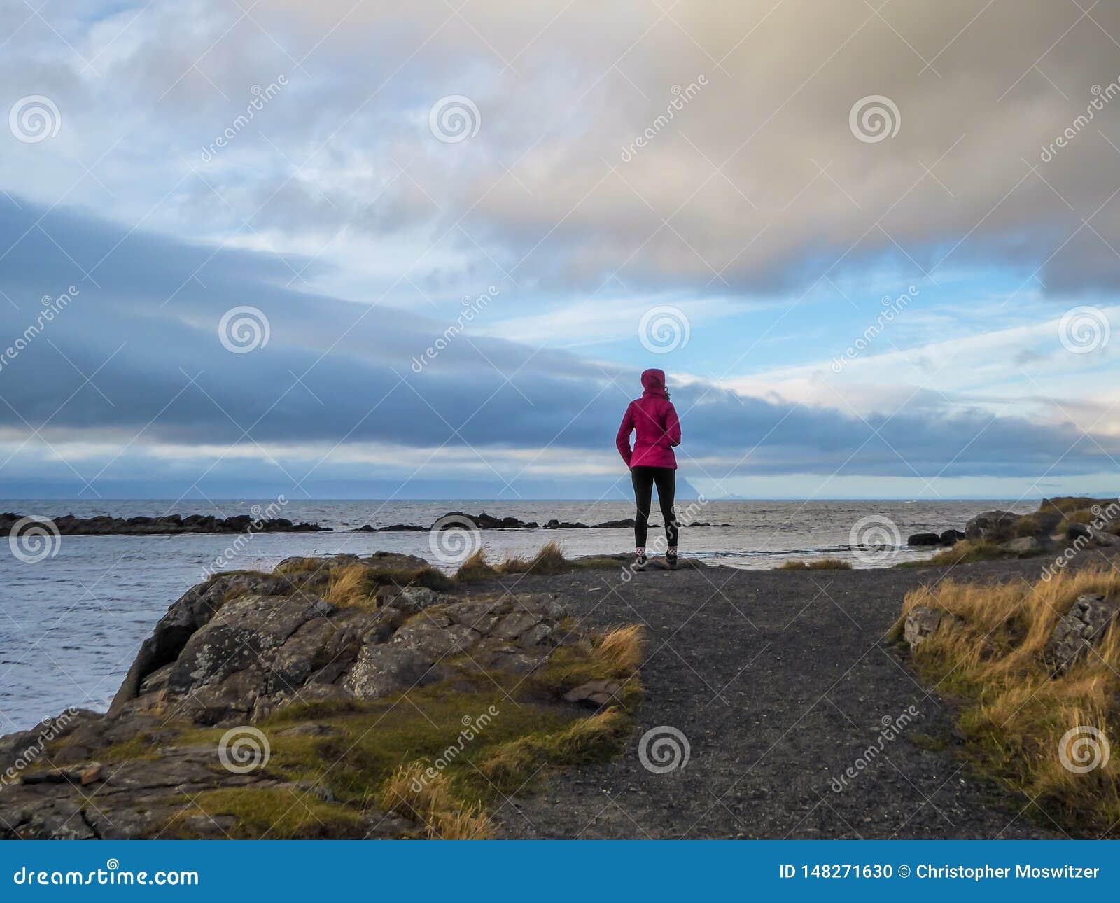 冰岛-在陆岬的一个女孩身分,观察风景