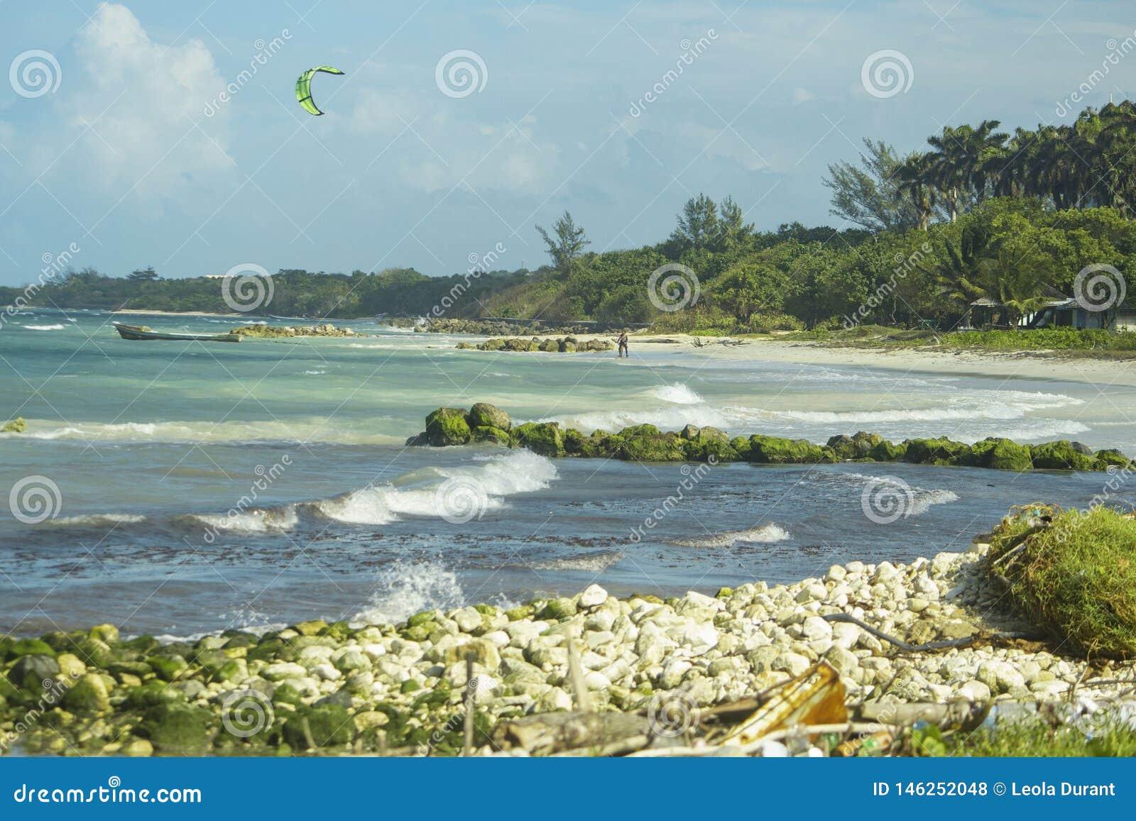 冲浪在牙买加的风筝2019年