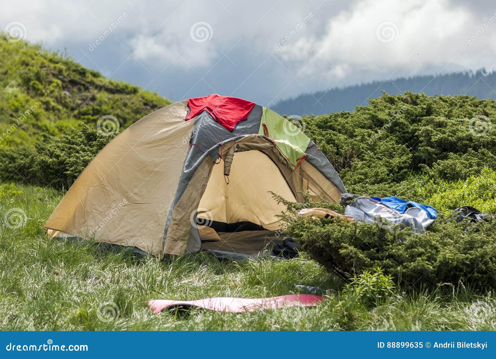冷的有雾的夏天早晨和游人远足者帐篷全景
