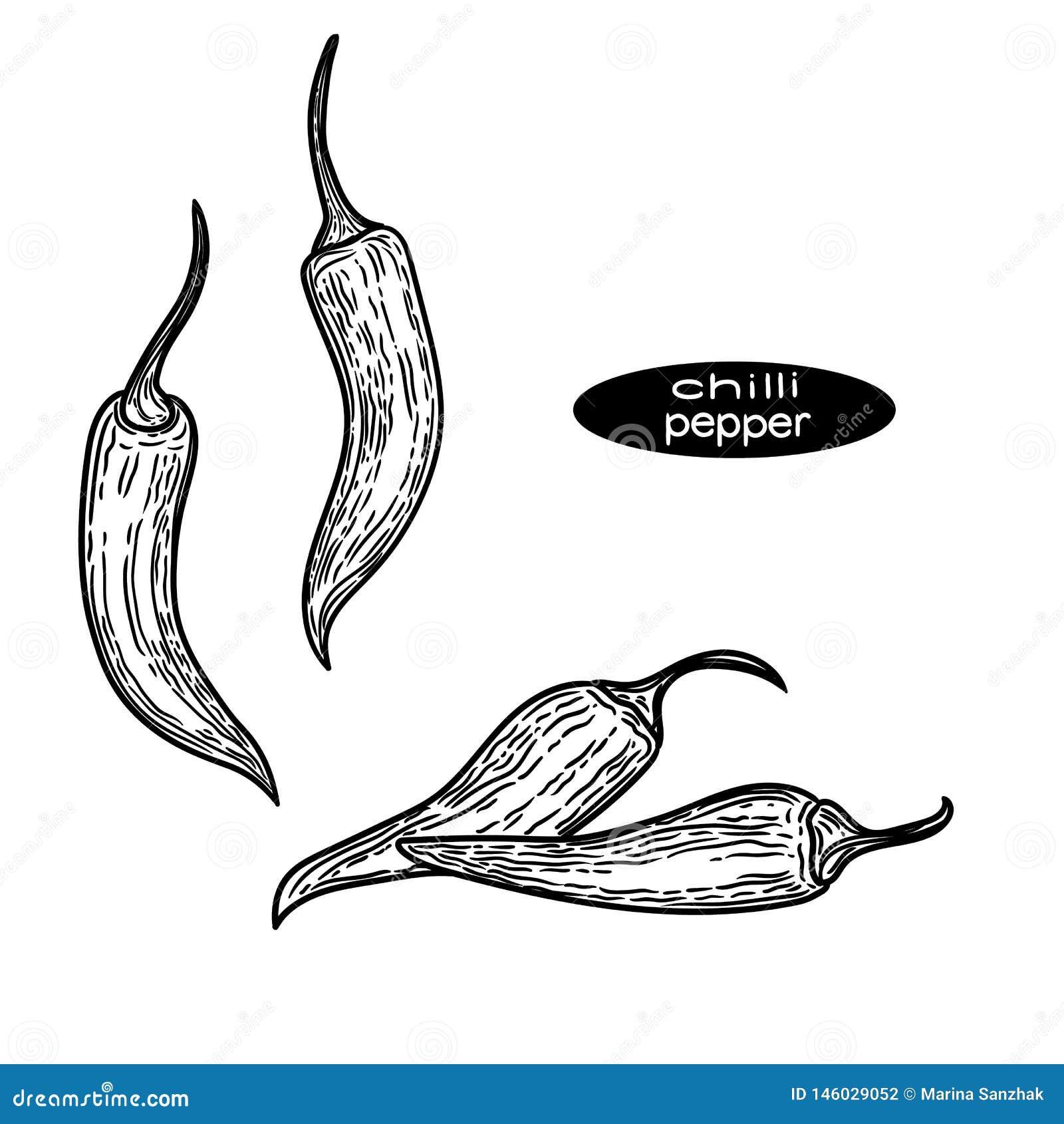 冷颤的胡椒例证