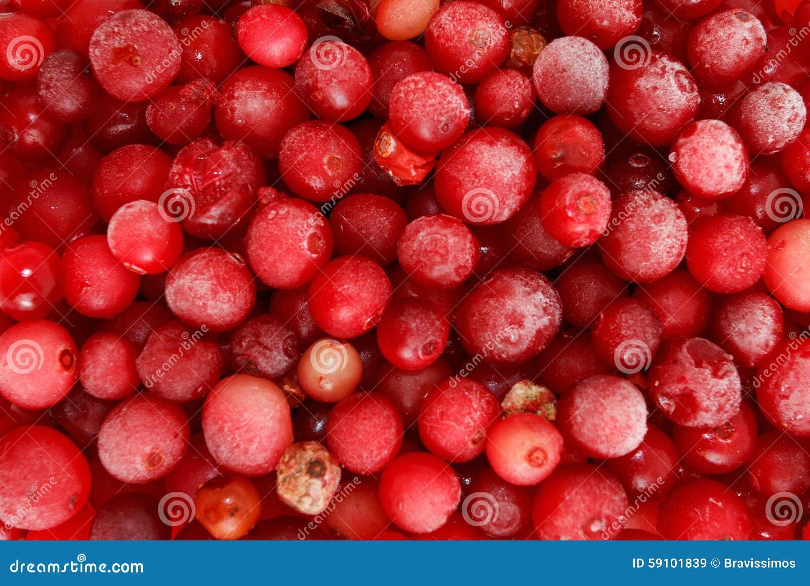 冷冻红浆果的宏观射击