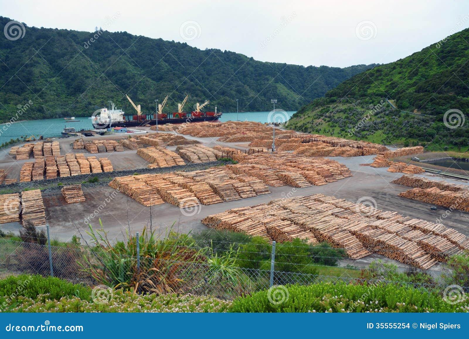 出口在皮克顿,新西兰的杉木日志