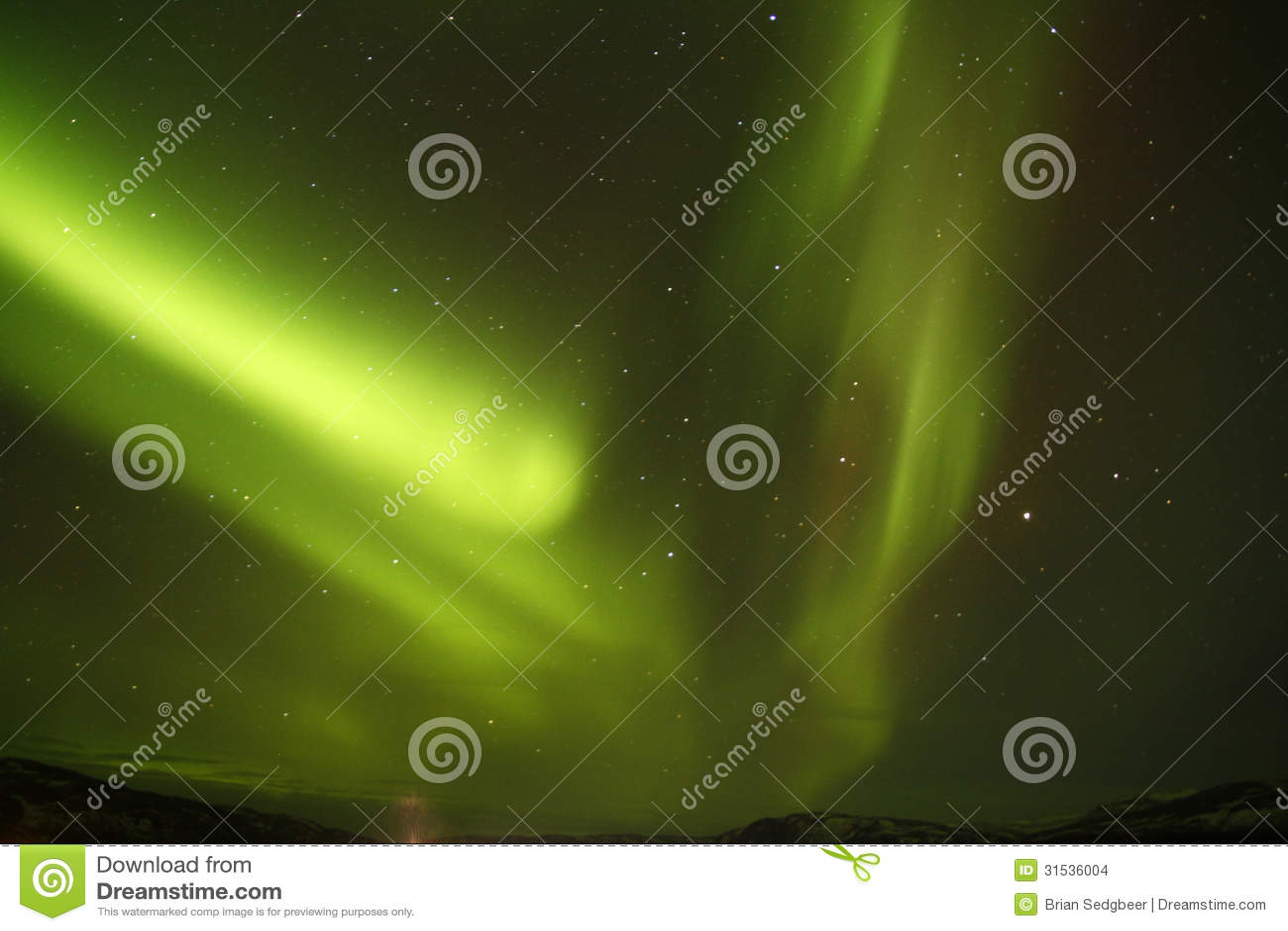 分叉的北极光
