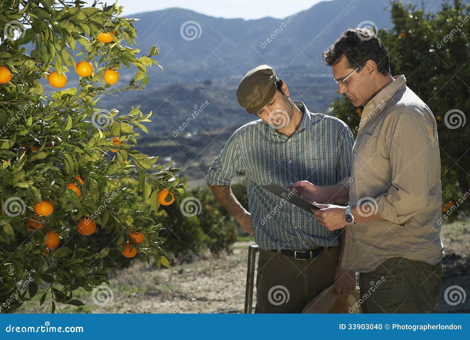 分析清单的农夫和监督员在农场