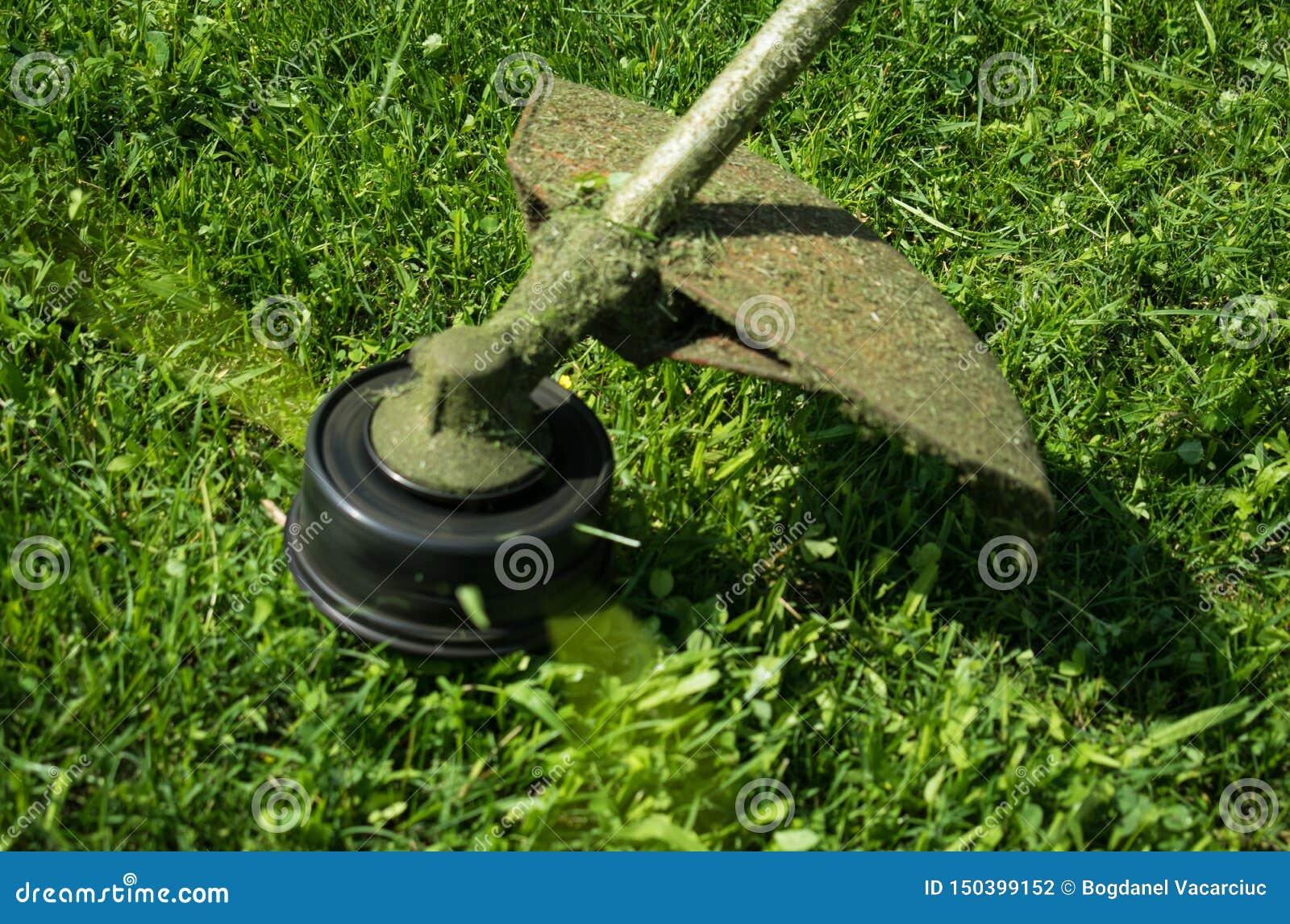 切开有机械刈草机的草坪