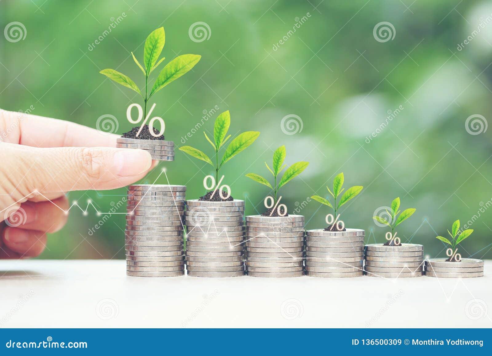 利息和开户概念,生长在堆的植物在自然绿色背景的硬币金钱