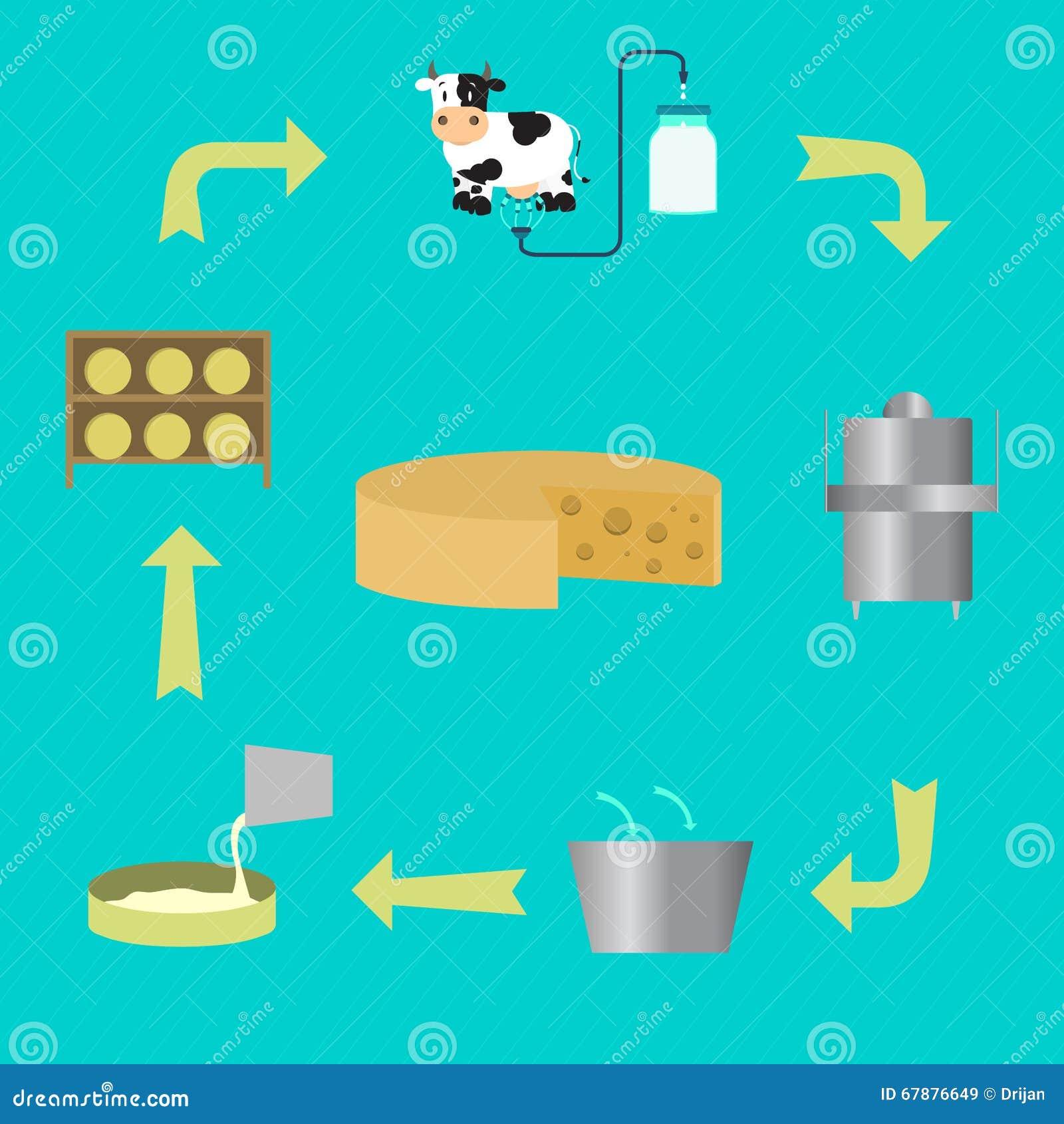 制造的乳酪过程