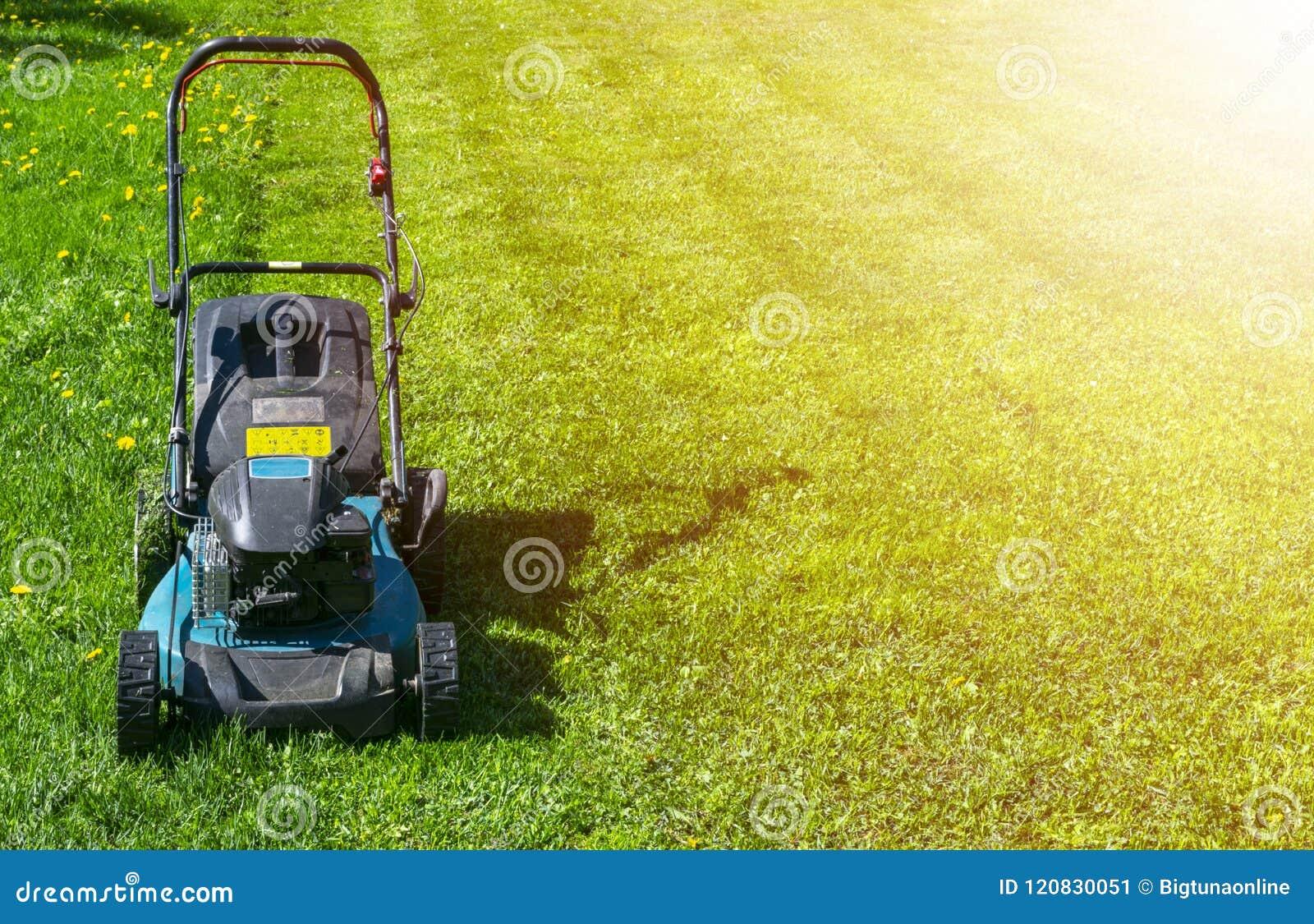割的草坪,在绿草,刈草机草设备,割的花匠关心工作工具,看法,晴天的关闭的割草机 软的lig