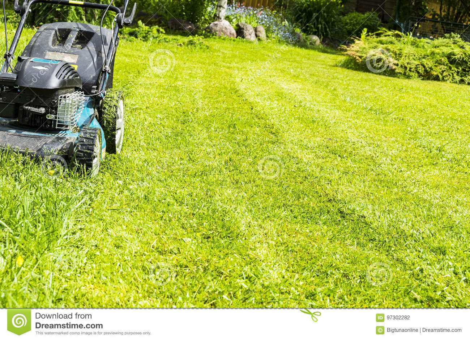 割的草坪,在绿草,刈草机草设备,割的花匠关心工作工具,看法,晴天的关闭的割草机