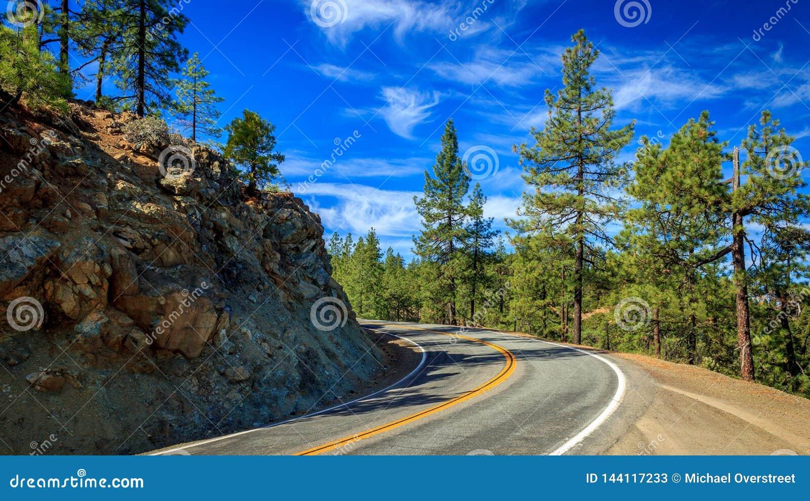 加利福尼亚北部曲线