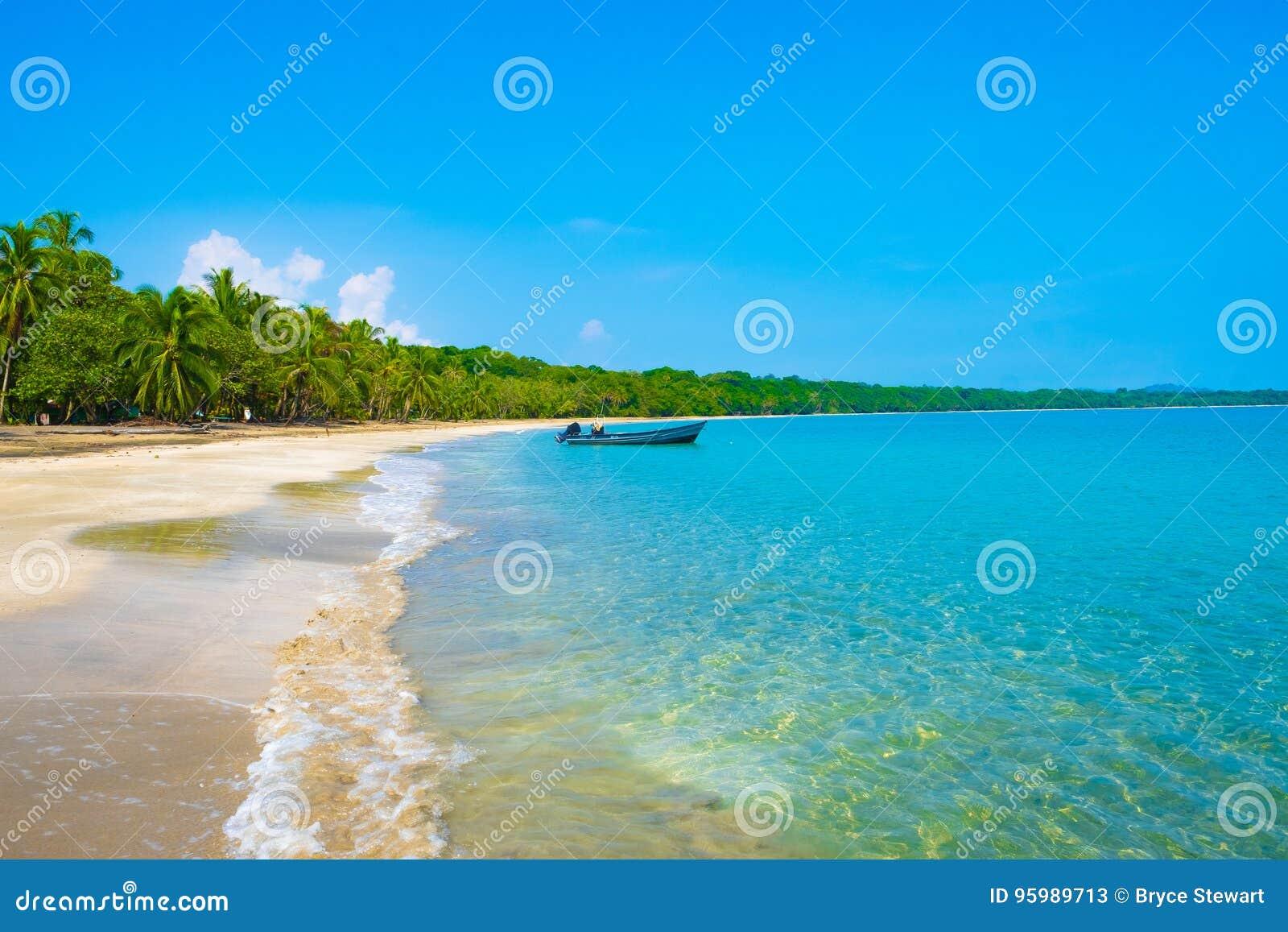 加勒比哥斯达黎加海洋水海滩天堂假期树雨林美好的绿松石水大海惊人的海滩海浪