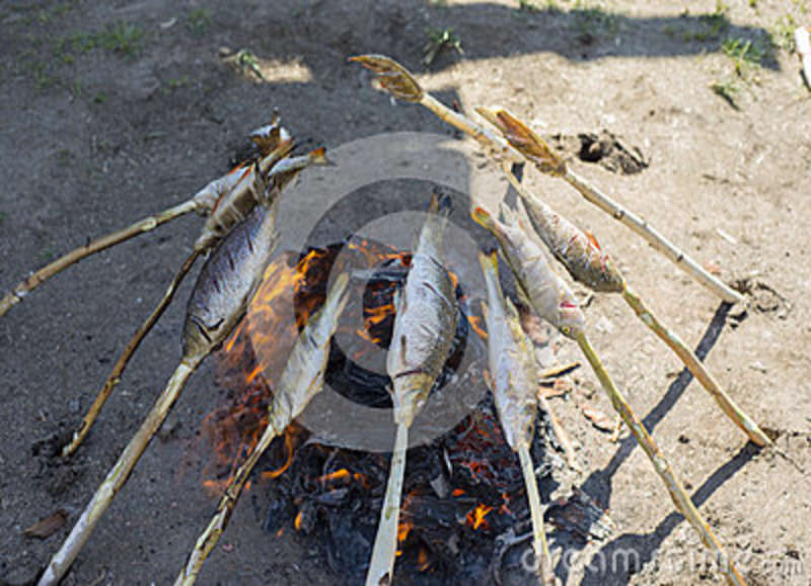 贝加尔湖omul在煤炭被烤