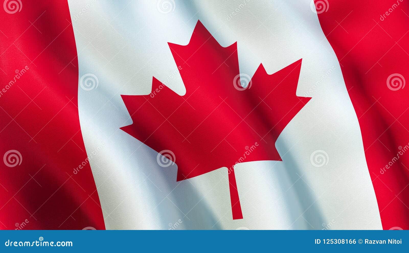 加拿大旗子,挥动在风