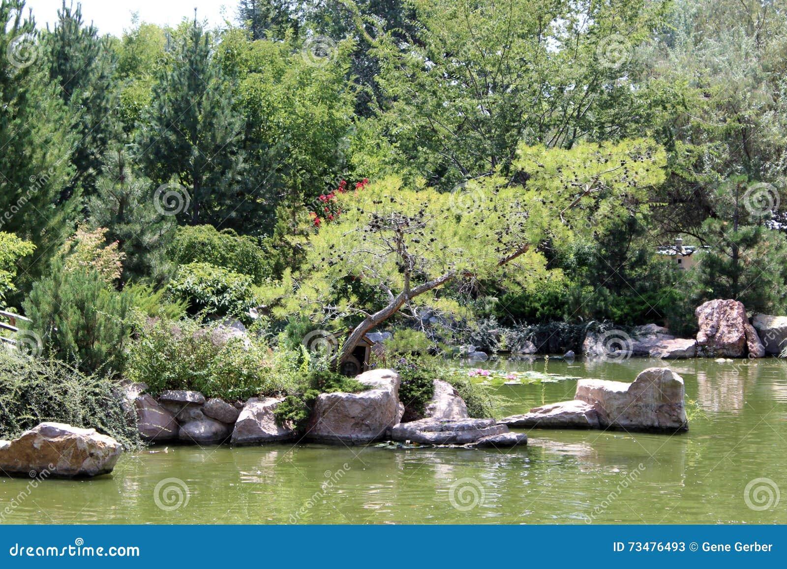 动物园的湖