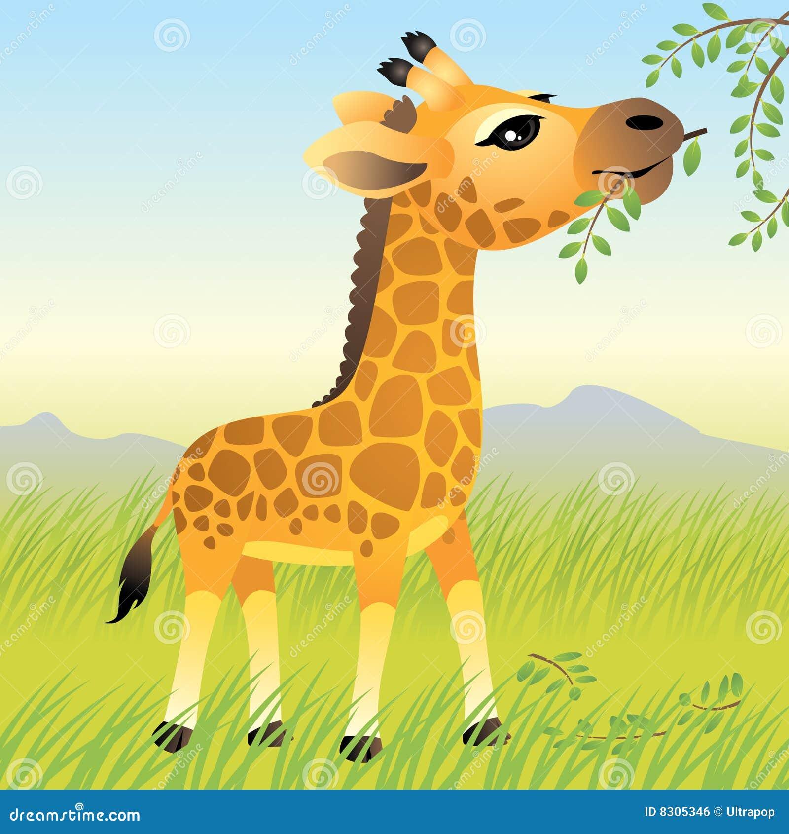 动物婴孩收集长颈鹿