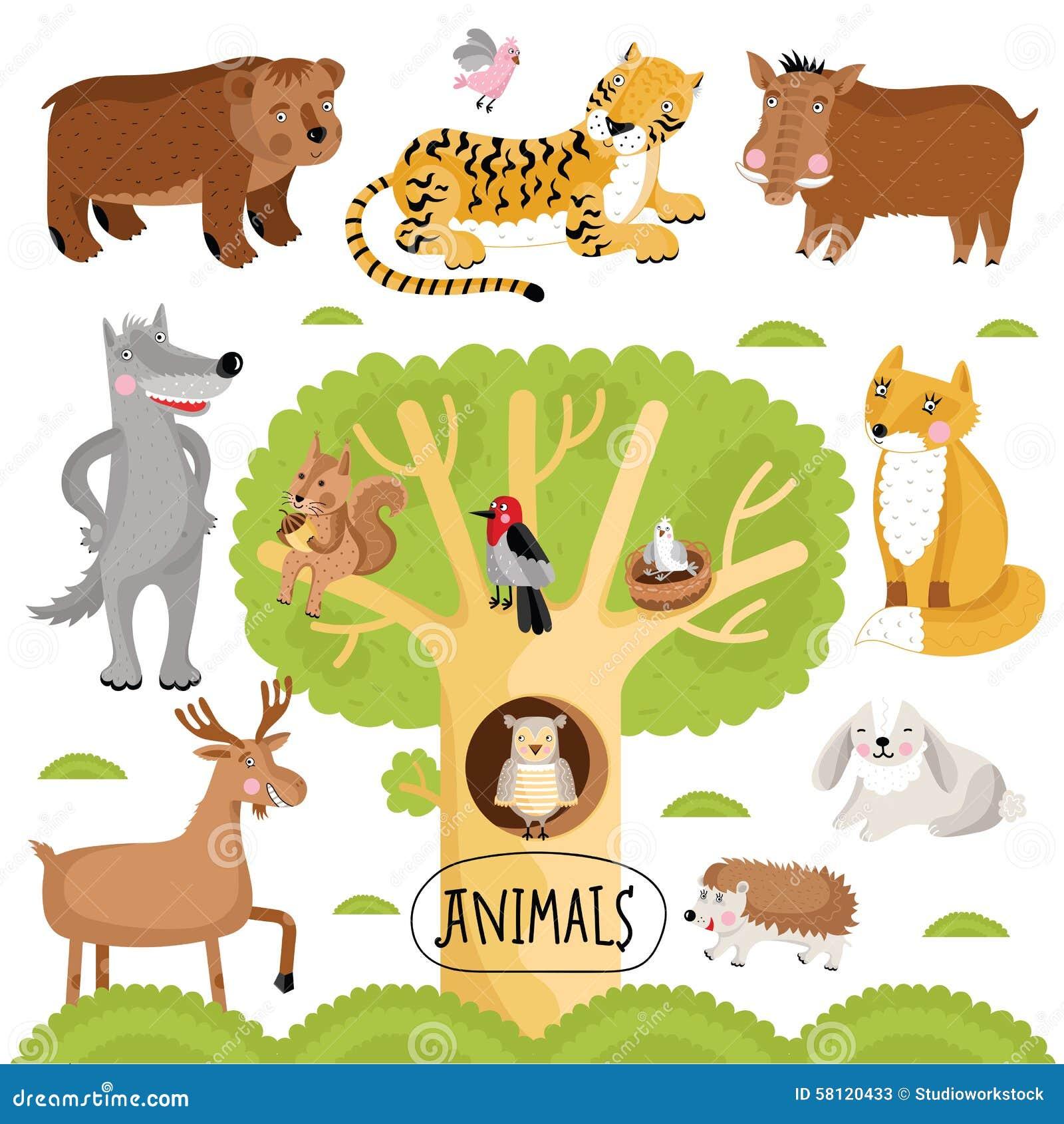 传染媒介被设置的动画片动物 野生森林动物包括老虎,狼,狐狸,熊和图片