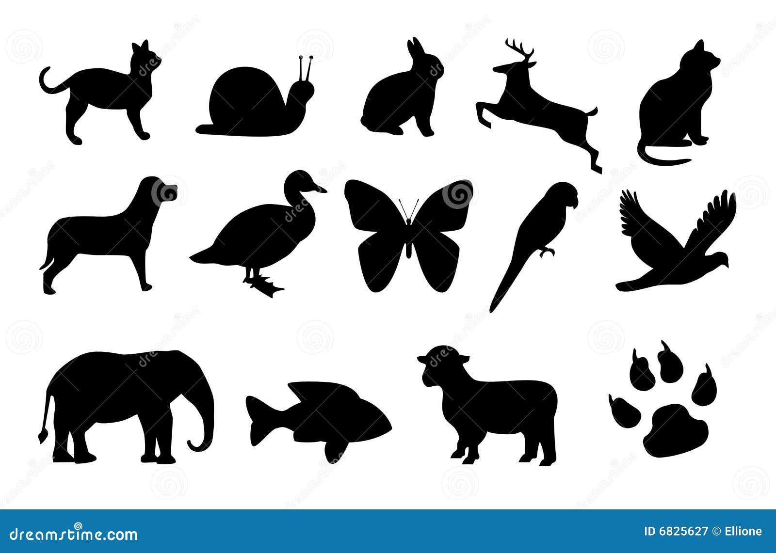 动物染黑九