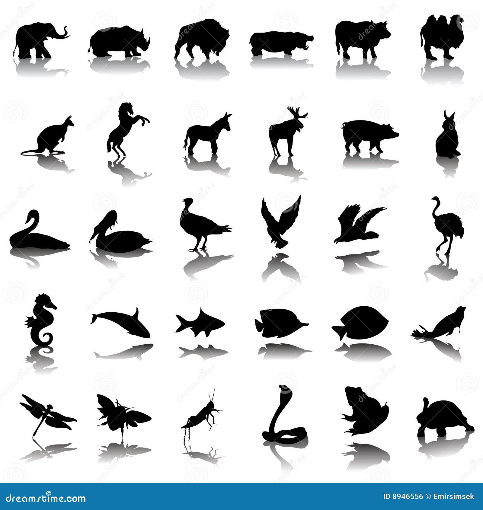 动物被设置的影子向量.图片