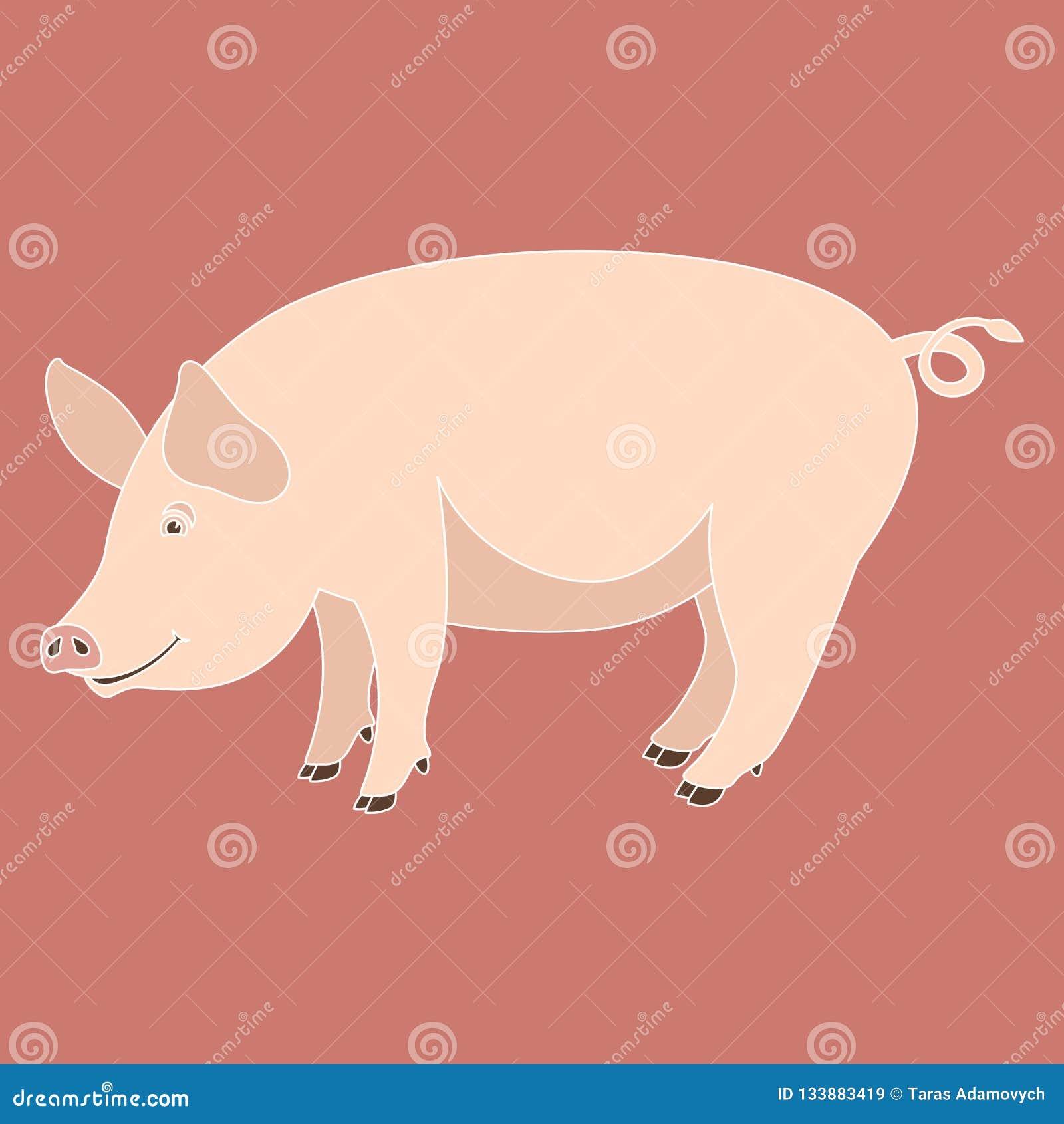 动画片猪,传染媒介例证,平的样式,外形