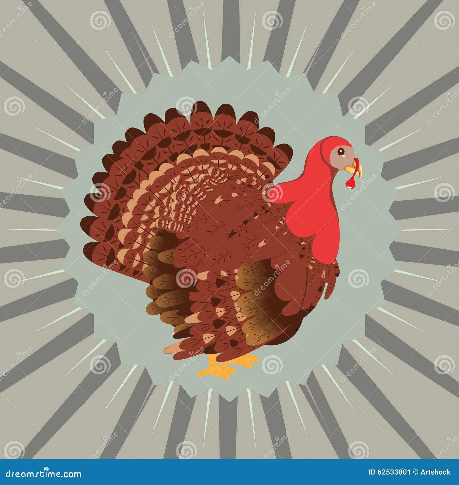 动画片土耳其鸟