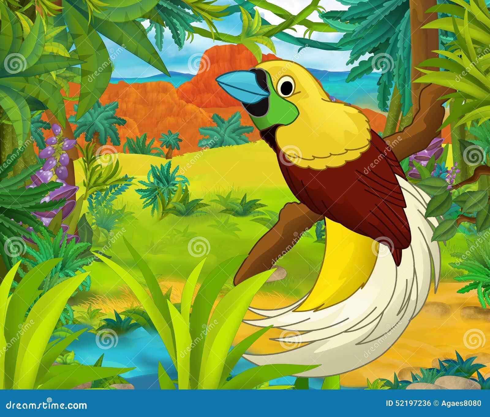 童画画鸟_动画片场面-野生美国动物-讽刺画-国王鸟