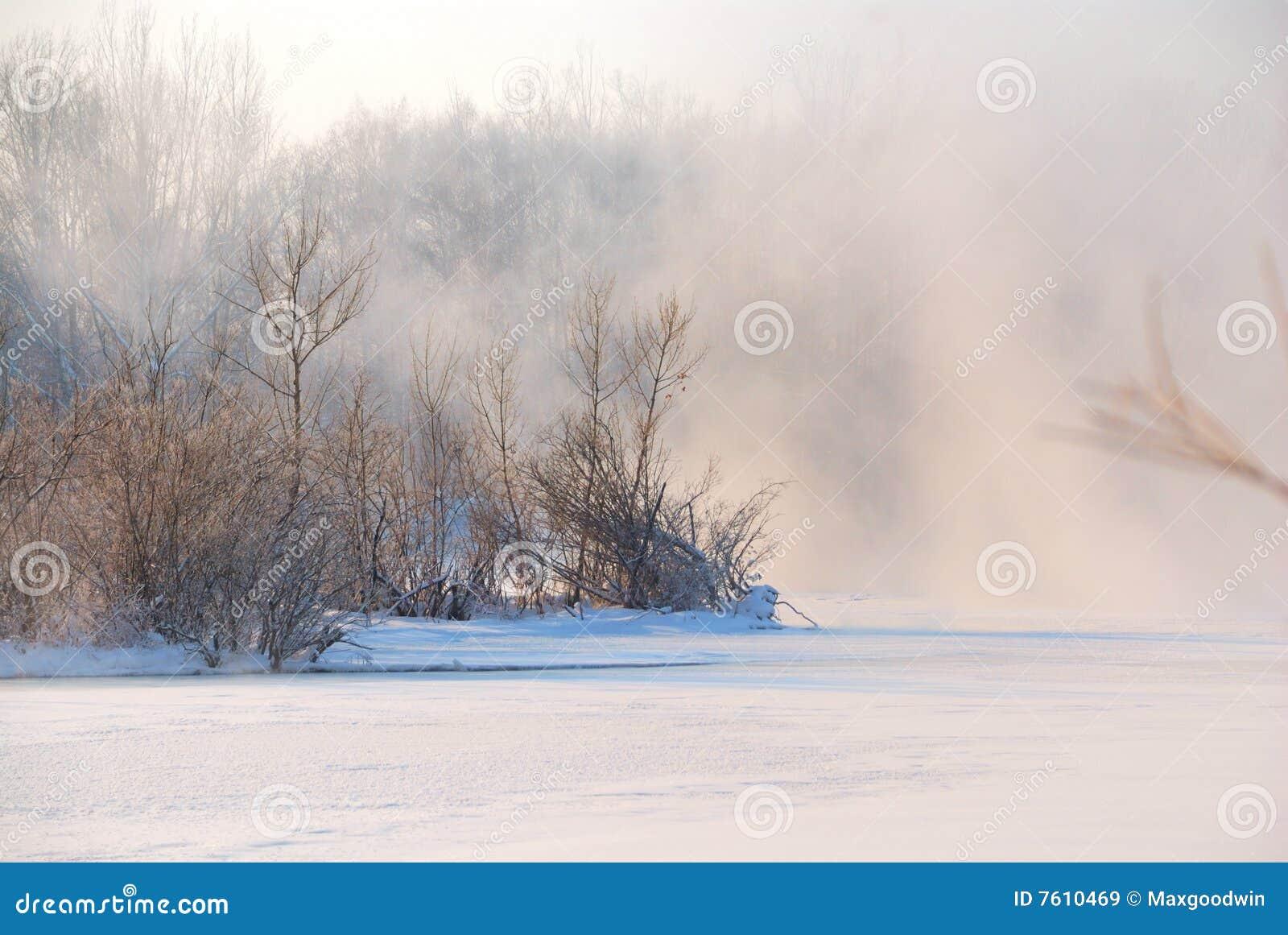 包括的雾冻结的河