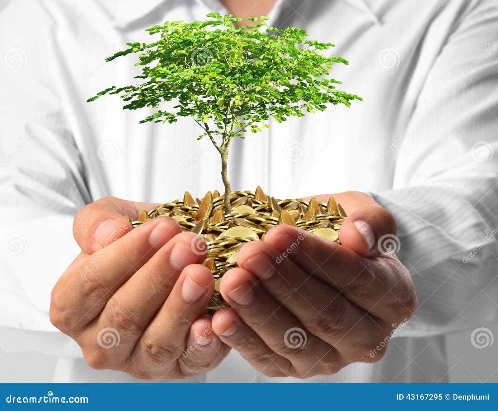 绿化事务的投资