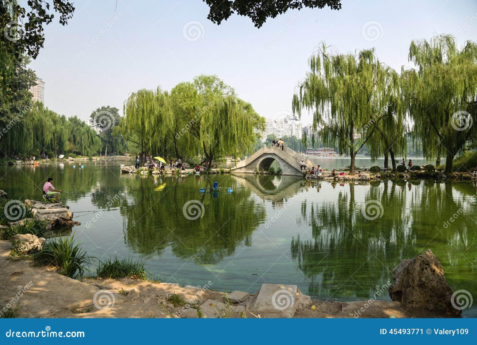 北京瓷 风景在公园- 4
