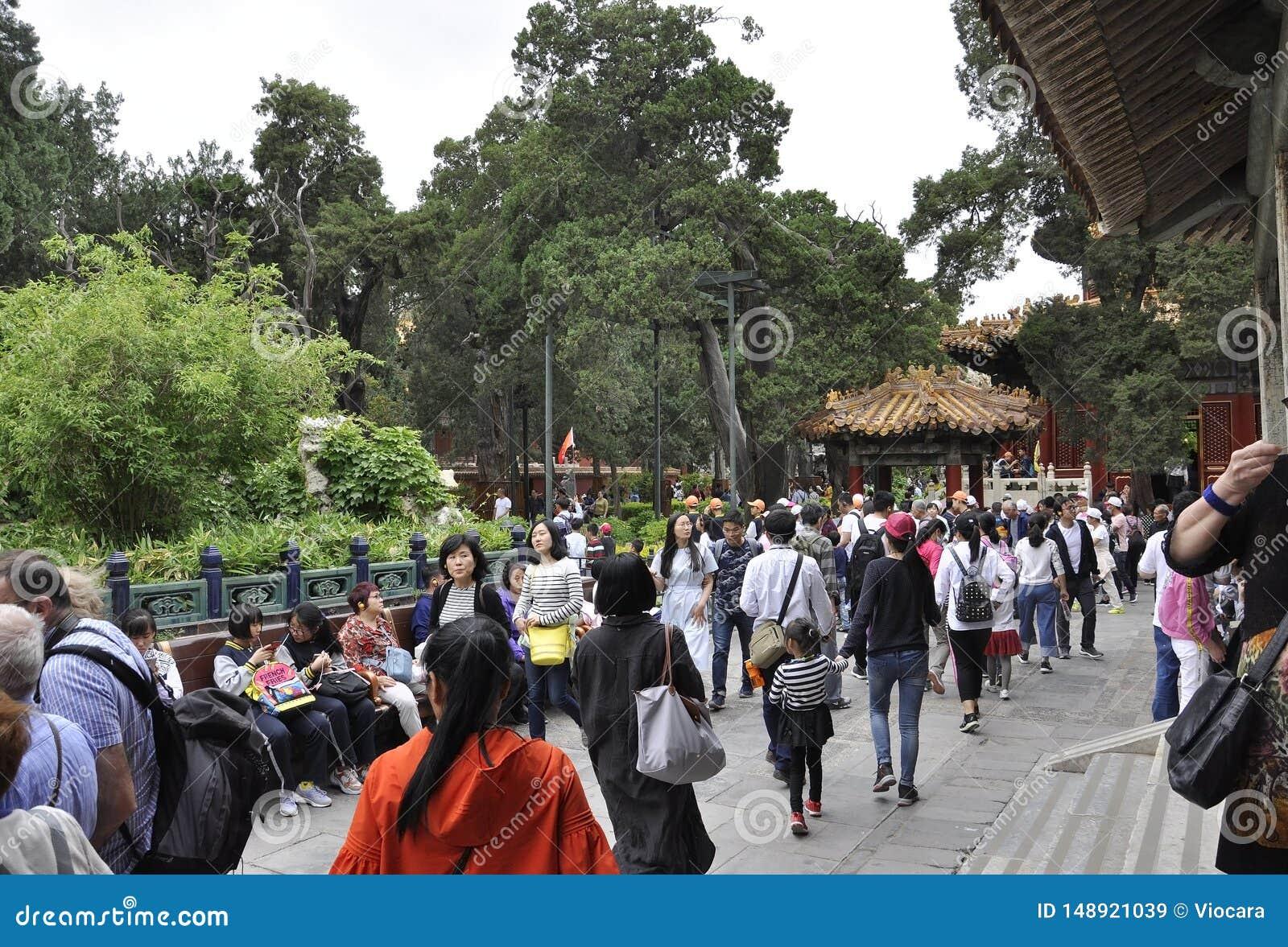 北京,第5可以:参观从Forbbiden市的许多游人皇家庭院在北京