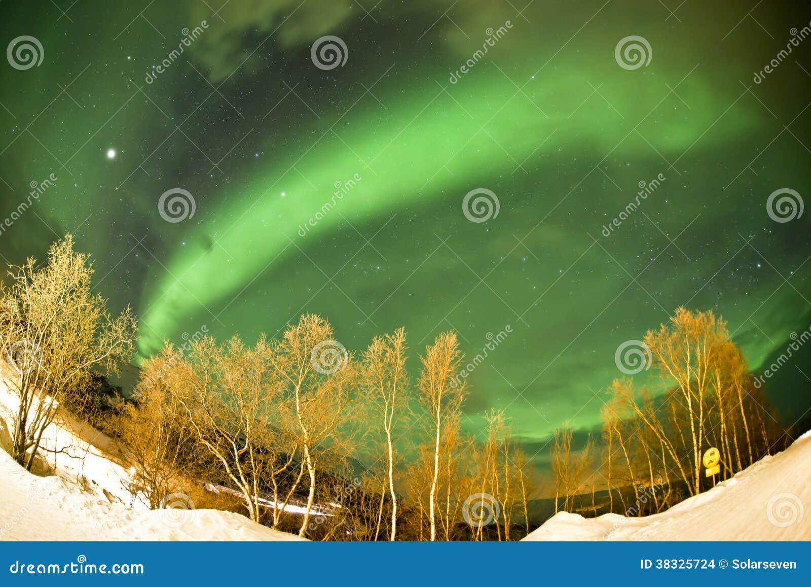 北极光(极光borealis)