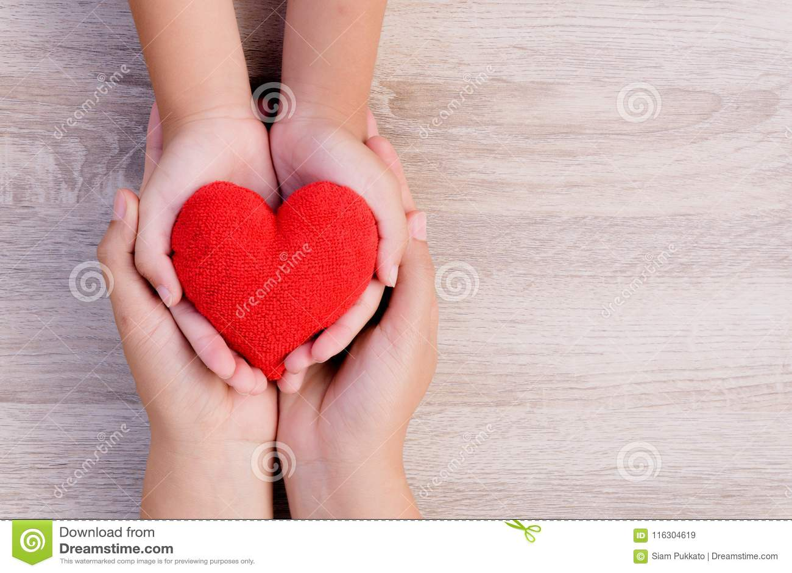医疗保健、爱、捐献器官、家庭保险和CSR概念