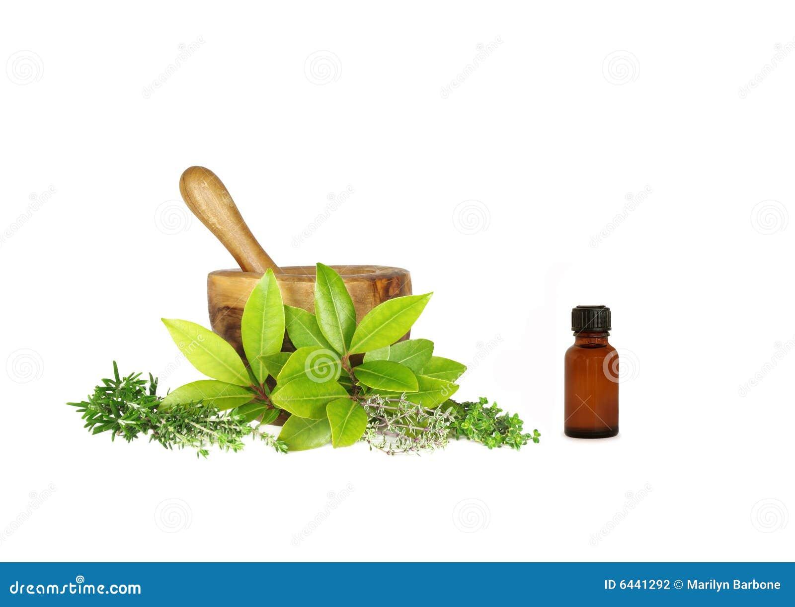 Culinery 6441292 for Mezclas de plantas medicinales