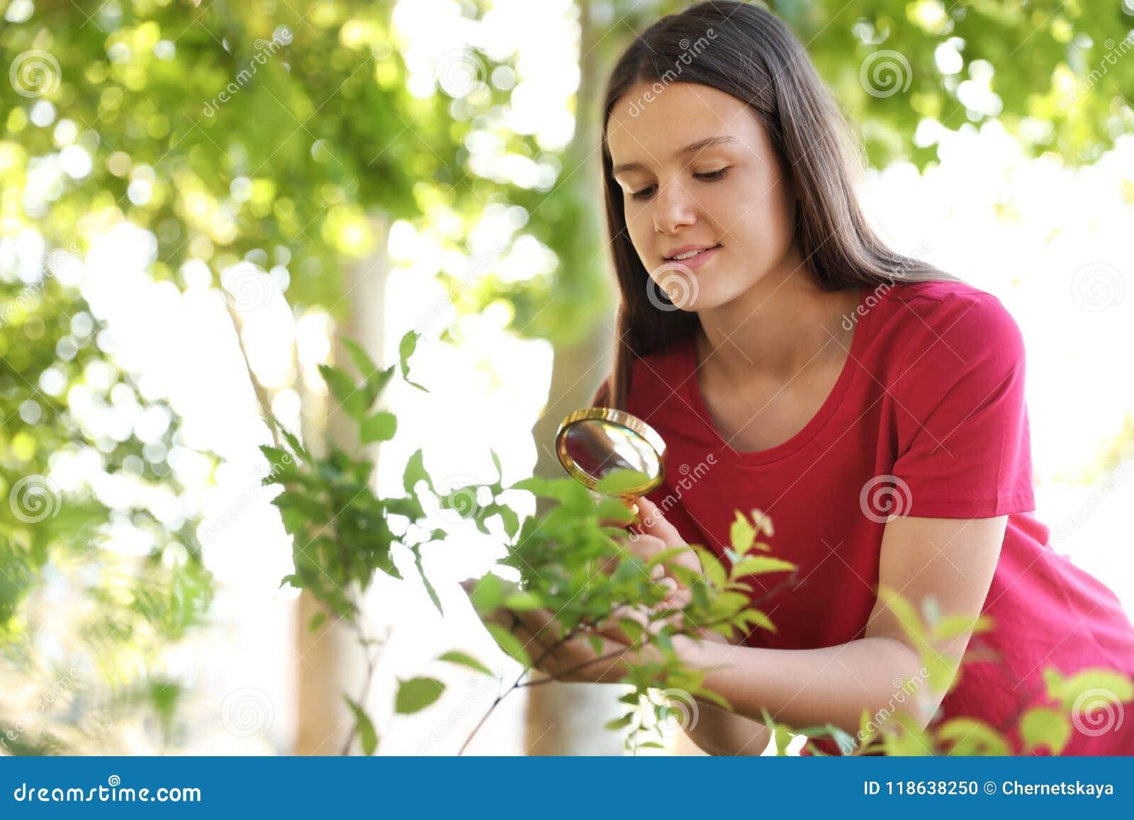 十几岁的女孩探索的灌木户外