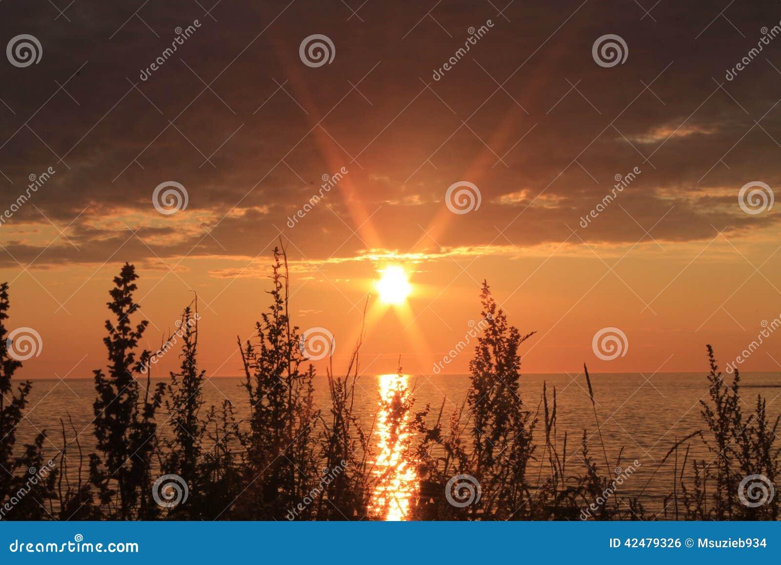 升起在镇静海洋的太阳