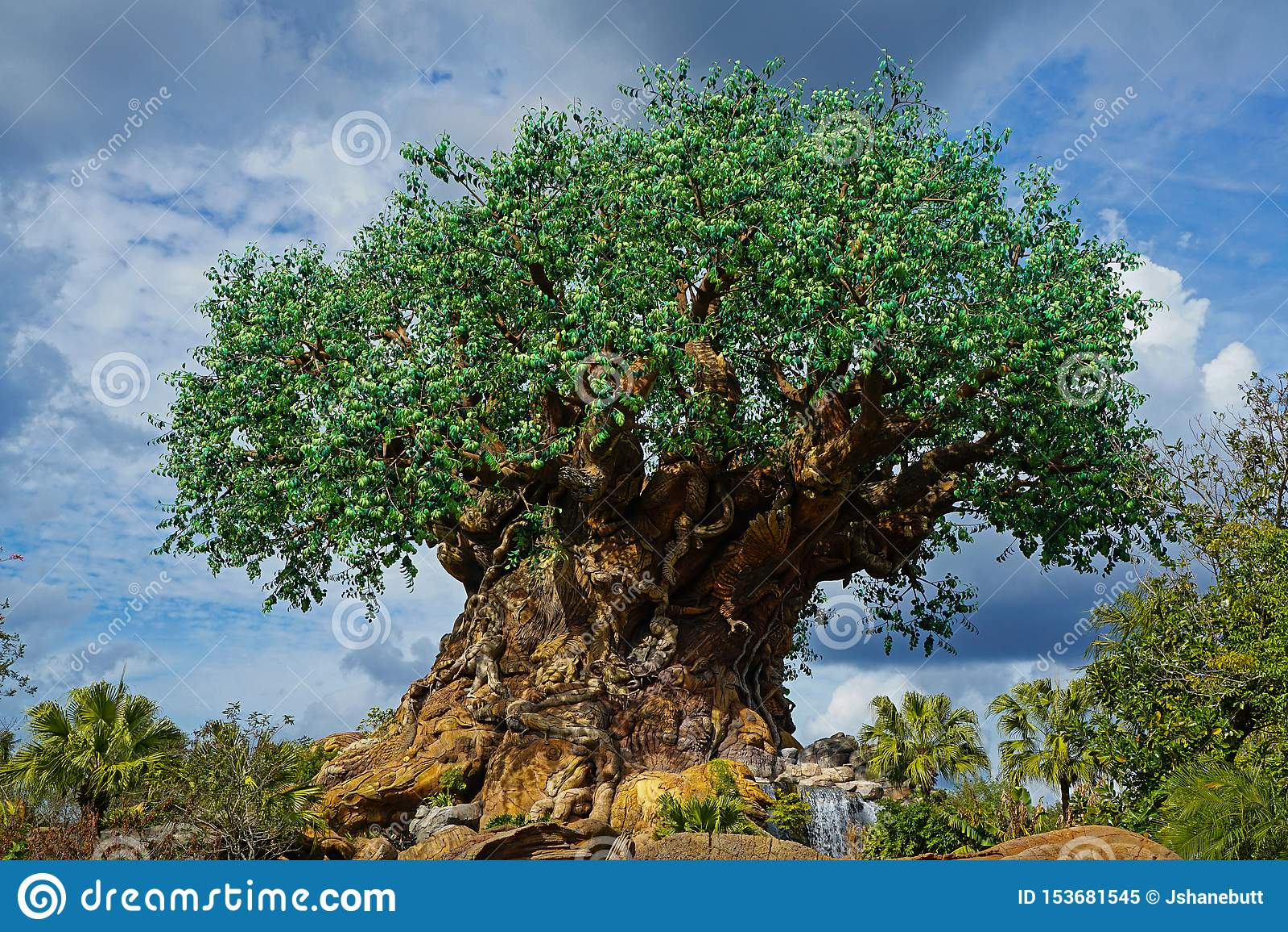 华特・迪士尼世界的动物界生物演化谱系图解